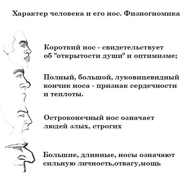 Форма носа и характер человека