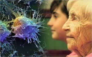 Старение -естественный процесс