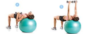 Упражнения для груди с гантелями